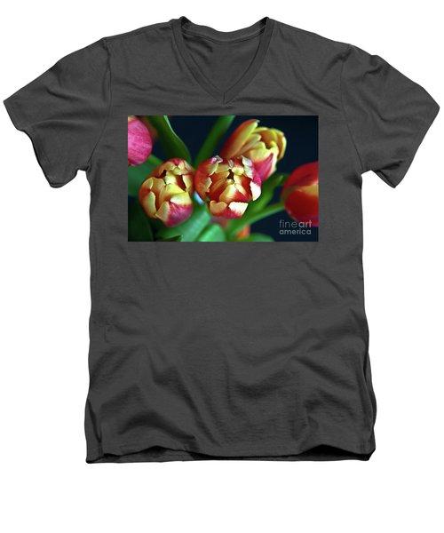 Eternal Sound Of Spring Men's V-Neck T-Shirt