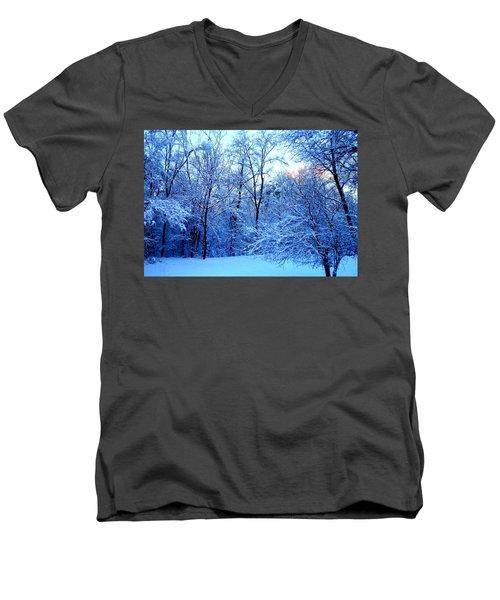 Ethereal Snow Men's V-Neck T-Shirt