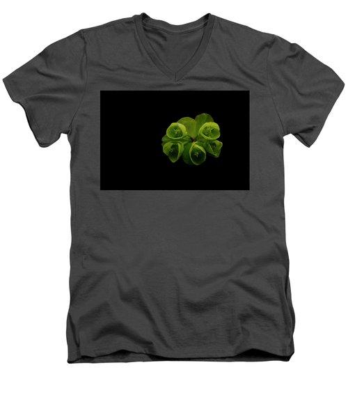 Euphorbia Men's V-Neck T-Shirt