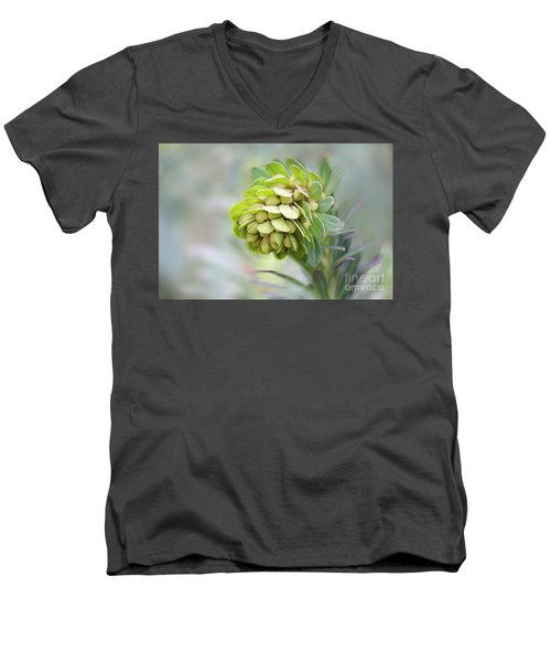 Men's V-Neck T-Shirt featuring the photograph Euphorbia by Linda Lees