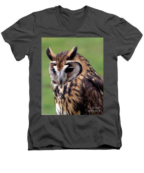 Eurasian Striped  Owl Men's V-Neck T-Shirt