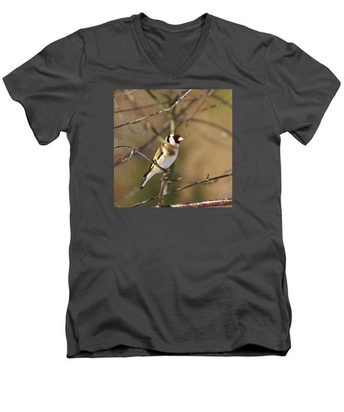 European Goldfinch 2 Men's V-Neck T-Shirt by Jouko Lehto