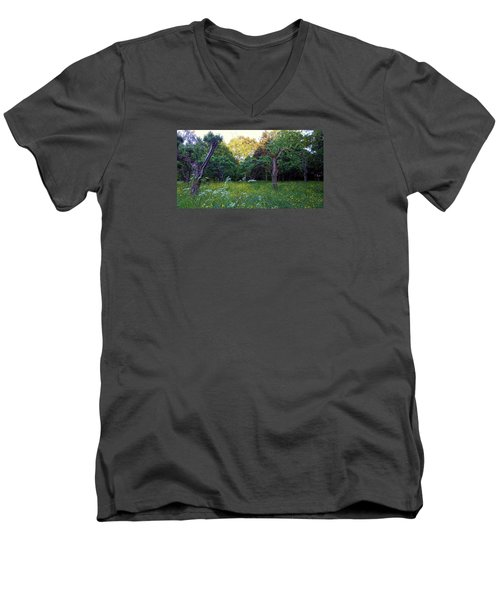 Men's V-Neck T-Shirt featuring the photograph Evening Light by Anne Kotan