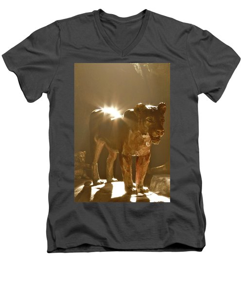 Evening's Light Men's V-Neck T-Shirt