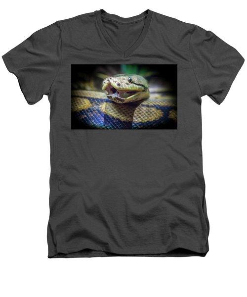 Evil In The Garden Men's V-Neck T-Shirt