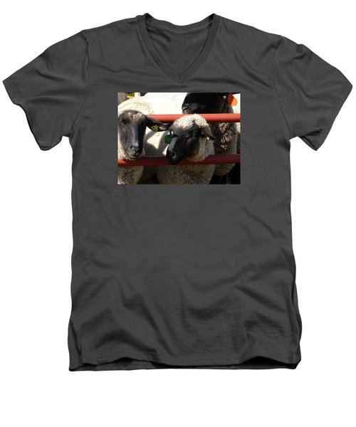 Men's V-Neck T-Shirt featuring the photograph Ewe Gate by J L Zarek