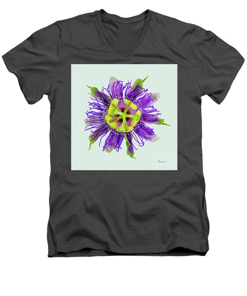 Expressive Yellow Green And Violet Passion Flower 50674l Men's V-Neck T-Shirt