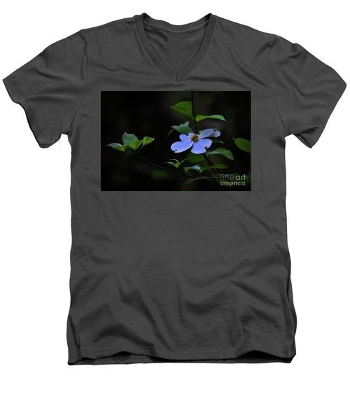 Men's V-Neck T-Shirt featuring the photograph Exquisite Light by Skip Willits