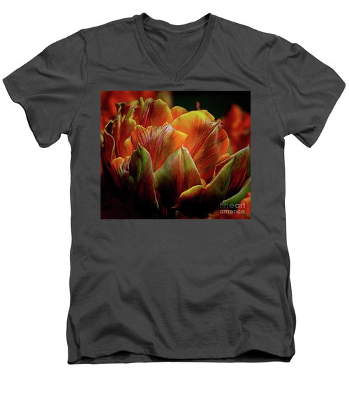 Extraordinary Passion Men's V-Neck T-Shirt by Diana Mary Sharpton