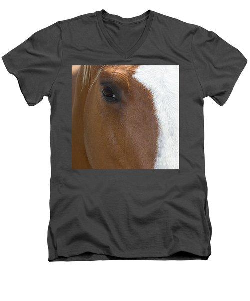 Eye On You Horse Men's V-Neck T-Shirt