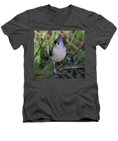 Eye Sparkle Men's V-Neck T-Shirt