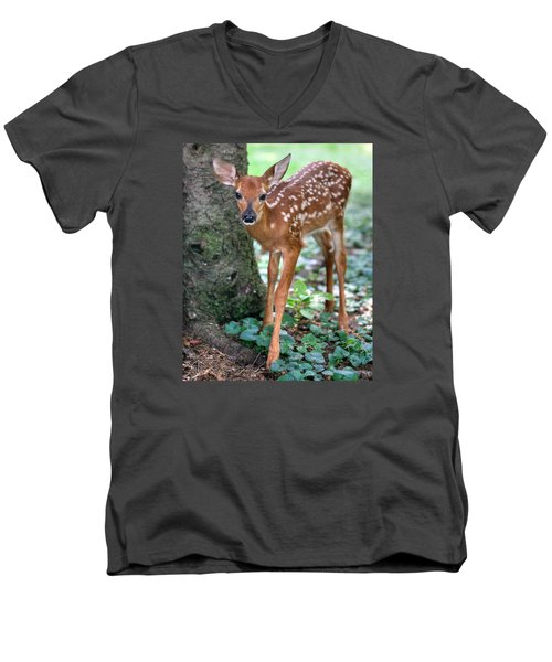 Eye To Eye With A Wide - Eyed Fawn Men's V-Neck T-Shirt by Gene Walls