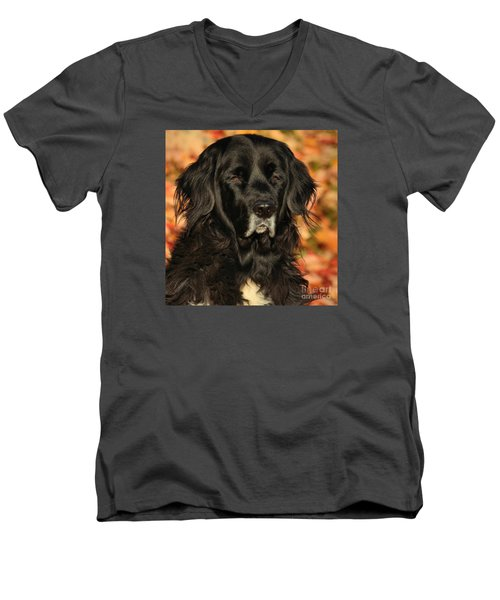 Men's V-Neck T-Shirt featuring the photograph Eyes Of Autumn by Debbie Stahre