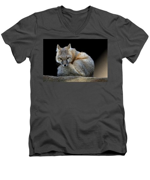 Eyes Of The Fox Men's V-Neck T-Shirt