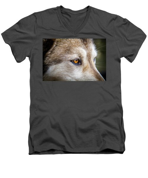 Men's V-Neck T-Shirt featuring the photograph Eyes Of The Gray Wolf by Teri Virbickis