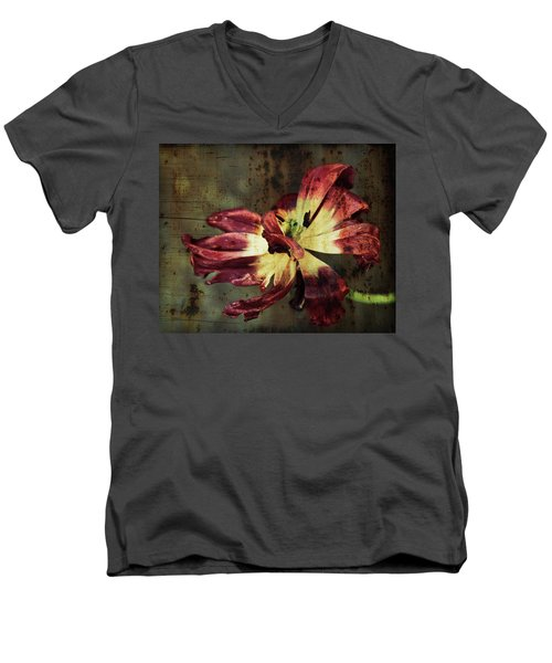 Faded Elegance Men's V-Neck T-Shirt