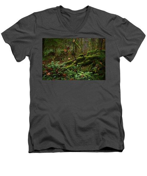 Fairy Forest Men's V-Neck T-Shirt