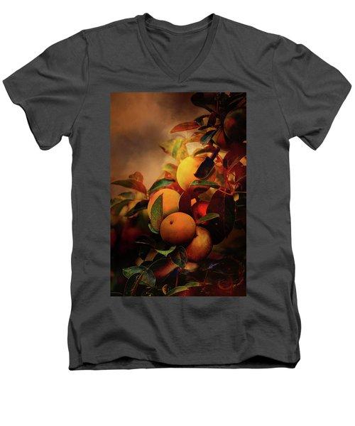 Fall Apples A Living Still Life Men's V-Neck T-Shirt