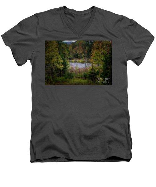 Fall At Fane Creek Men's V-Neck T-Shirt