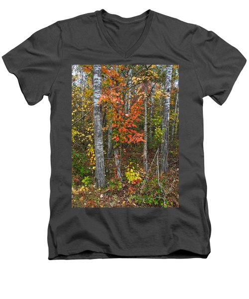 Fall Color At Gladwin 4543 Men's V-Neck T-Shirt