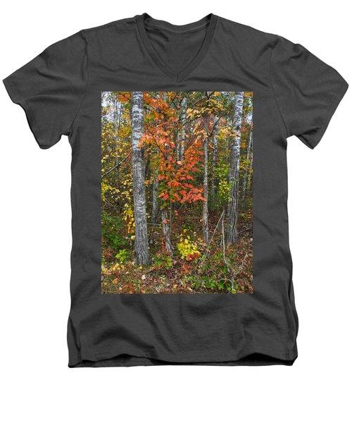 Fall Color At Gladwin 4543 Men's V-Neck T-Shirt