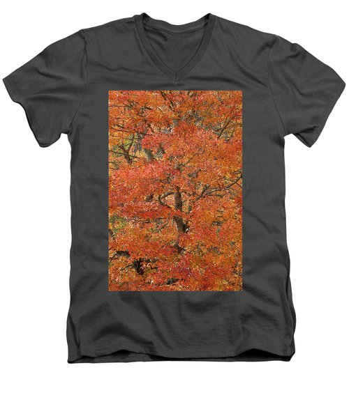 Fall Color Men's V-Neck T-Shirt