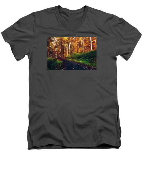 Fall Colors Men's V-Neck T-Shirt