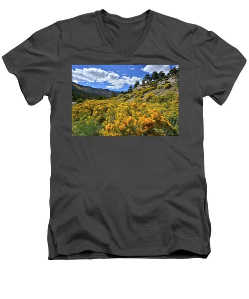 Fall Colors Come To Mt. Charleston Men's V-Neck T-Shirt