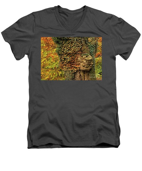 Fall Colors In Nature Men's V-Neck T-Shirt