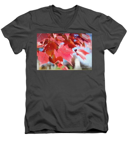 Fall Colors Oil Men's V-Neck T-Shirt