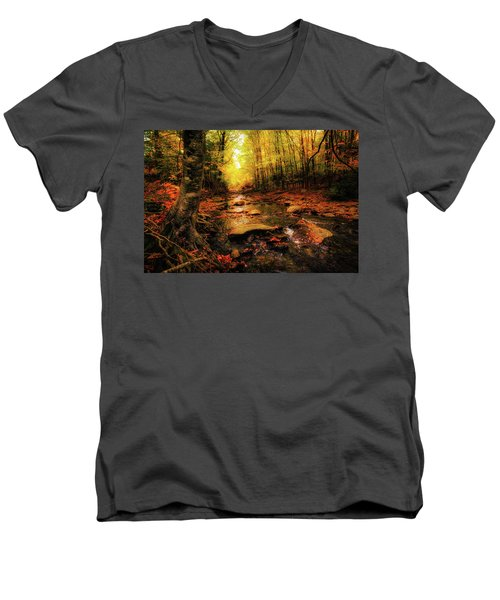 Fall Dreams Men's V-Neck T-Shirt