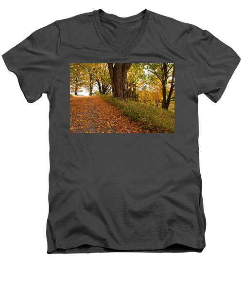 Fall Driveway Men's V-Neck T-Shirt by Lois Lepisto