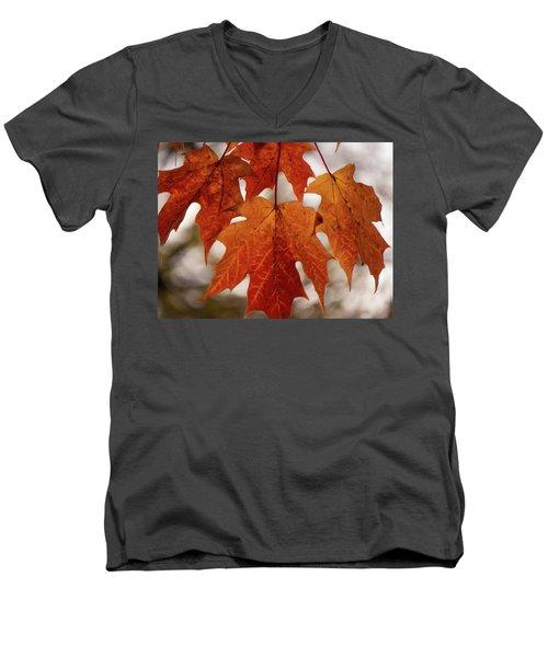 Fall Foliage Men's V-Neck T-Shirt by Kimberly Mackowski