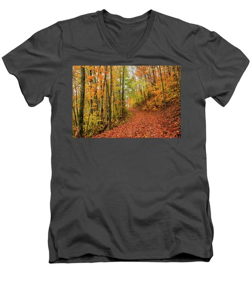 Fall Foliage Men's V-Neck T-Shirt