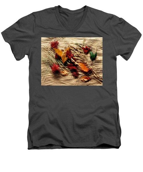 Fall Foliage Still Life Men's V-Neck T-Shirt