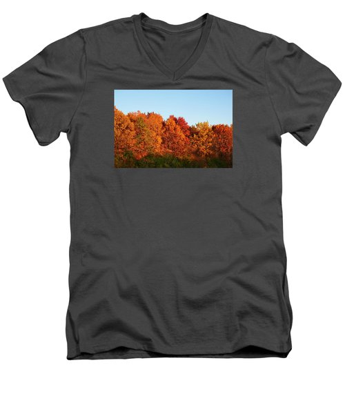 Men's V-Neck T-Shirt featuring the photograph Fall Forest by Nikki McInnes