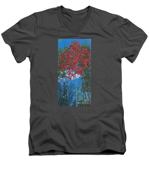 Fall In Asheville Men's V-Neck T-Shirt by Anne Marie Brown