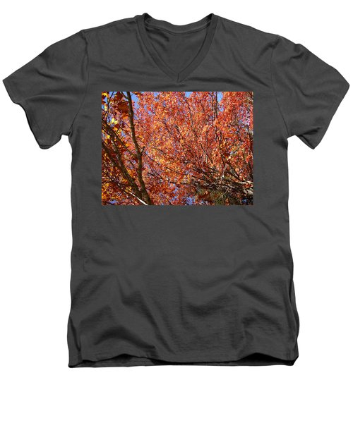 Fall In The Blue Ridge Mountains Men's V-Neck T-Shirt