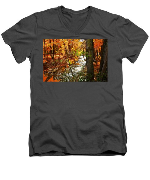 Fall In The Mountains Men's V-Neck T-Shirt