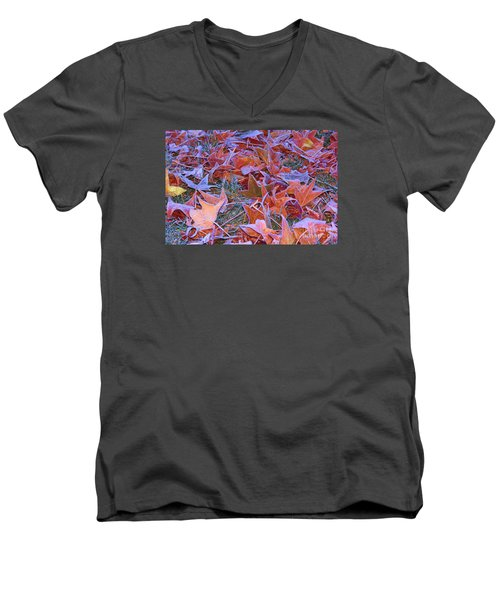 Fall Into Winter Men's V-Neck T-Shirt by Patrick Witz