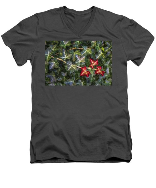 Men's V-Neck T-Shirt featuring the photograph Fall Ivy Leaves by Adam Romanowicz