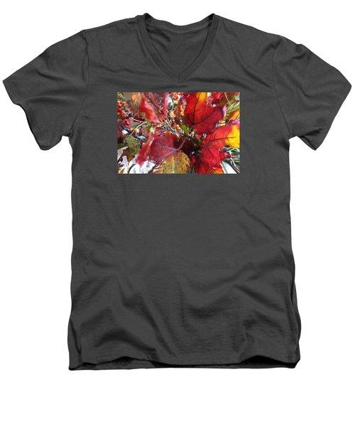 Fall Leaves Design 1 Men's V-Neck T-Shirt