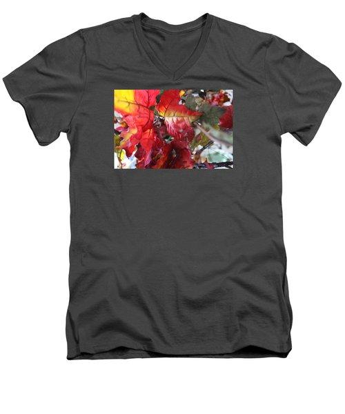 Fall Leaves Design 4 Men's V-Neck T-Shirt