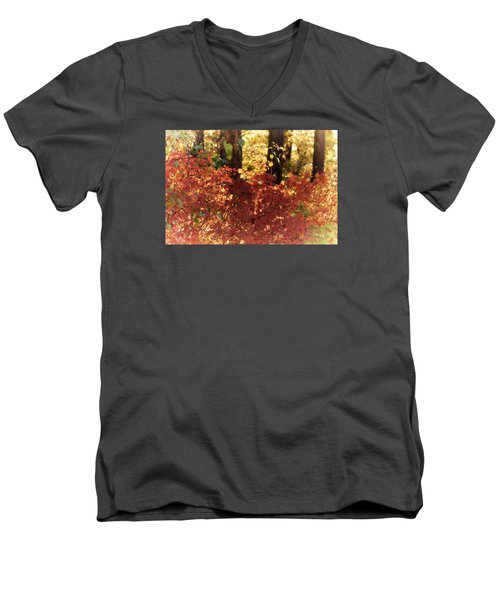 Fall Men's V-Neck T-Shirt by Loni Collins