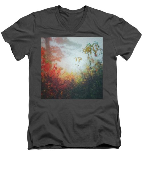 Fall Magic Men's V-Neck T-Shirt