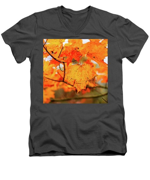 Fall Maple Leaf Men's V-Neck T-Shirt