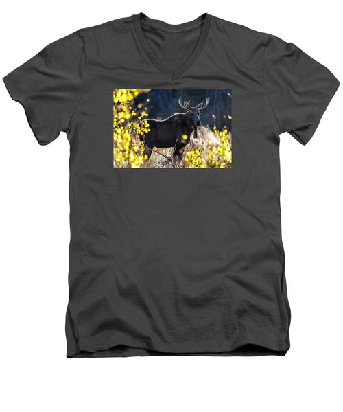 Fall Moose Men's V-Neck T-Shirt
