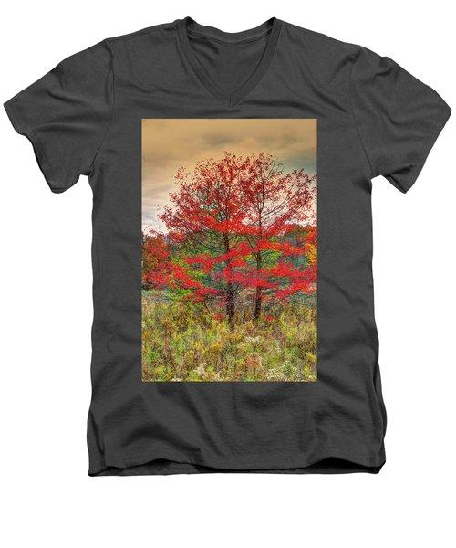 Fall Painting Men's V-Neck T-Shirt by Skip Tribby