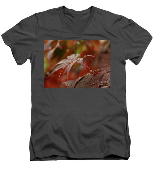 Fall Rain Men's V-Neck T-Shirt