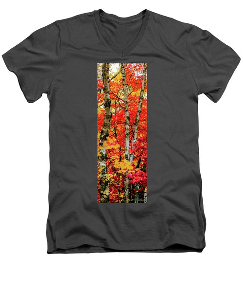 Fall Reds Men's V-Neck T-Shirt